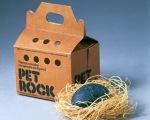 petrock roche ami